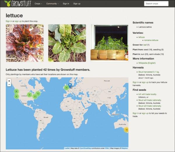 20140909004150-lettuce_border