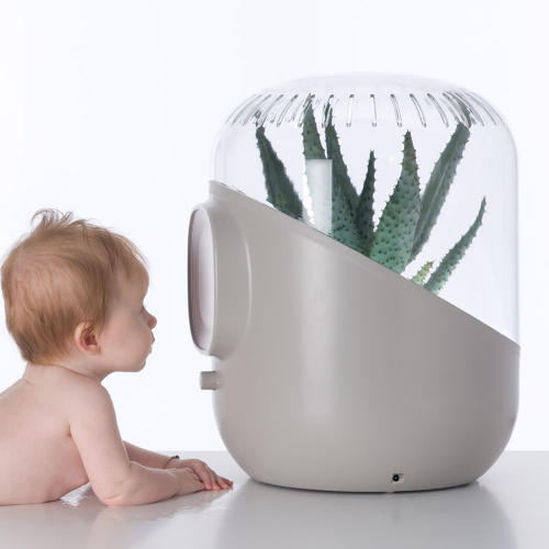 3035304-slide-s-0-an-air-purifier-with-a-plant-growing-inside-it