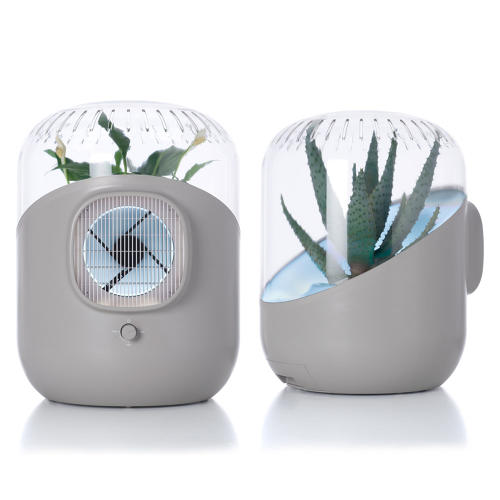 3035304-slide-s-1-an-air-purifier-with-a-plant-growing-inside-it