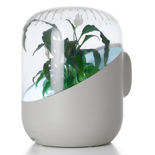 3035304-slide-s-2-an-air-purifier-with-a-plant-growing-inside-it