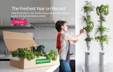 urban-gardening-kit