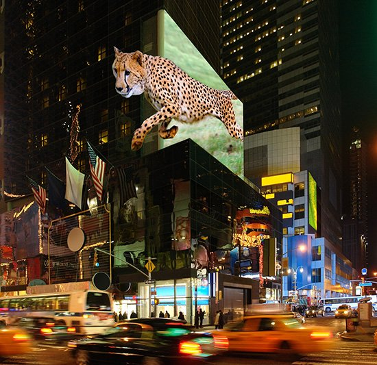 TriLite_3D_display_Times_Square_small
